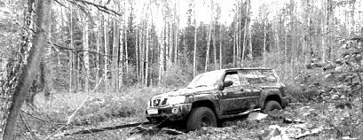 Сэнд траки Horsewinch. Испытания в лесу.